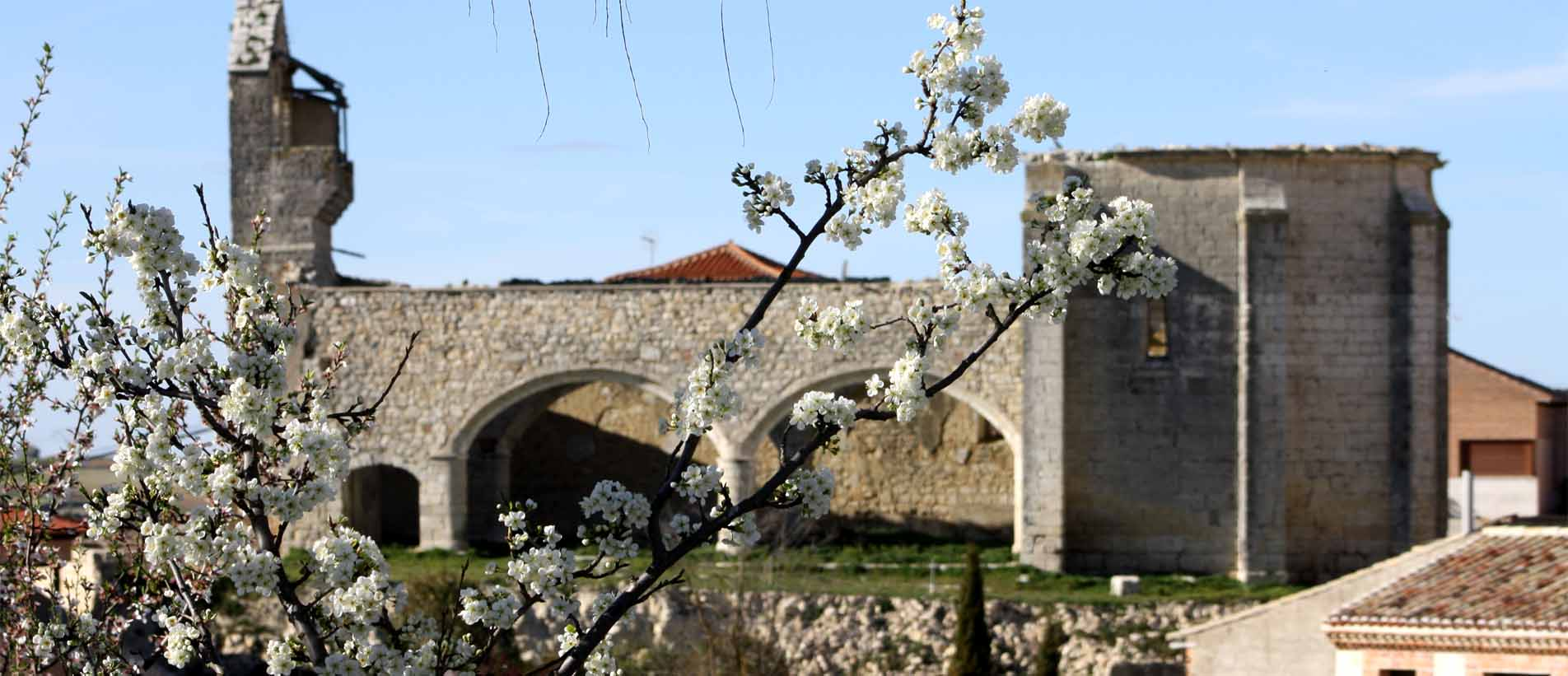 Iglesia de San Cebrian-Valladolid